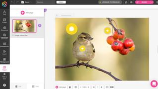 Szkolenie on-line dla nauczycieli bibliotekarzy