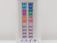 Saliva Check 6 Test Strips Lines.png