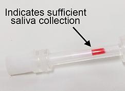 Saliva Check 6 Colour Indicator.png