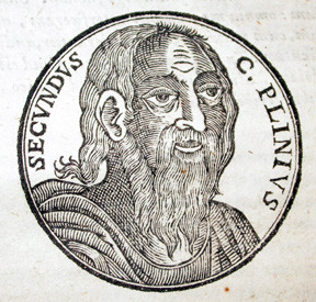 Pliny the Elder, from www.faculty.arts.ubc.ca