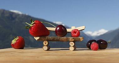 Piccoli frutti con marchio di qualità Alto Adige - www.prodottitipicialtoadige.com