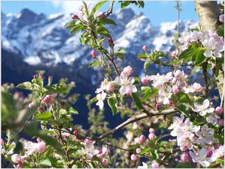 News di primavera - Spring news!
