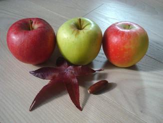 Seasons change, so do tastes - Apples