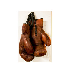 Gloves - Fitzroy Lodge