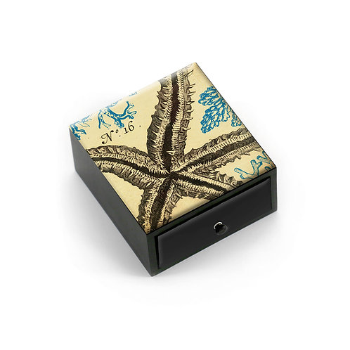 Boutique Box - 5463S