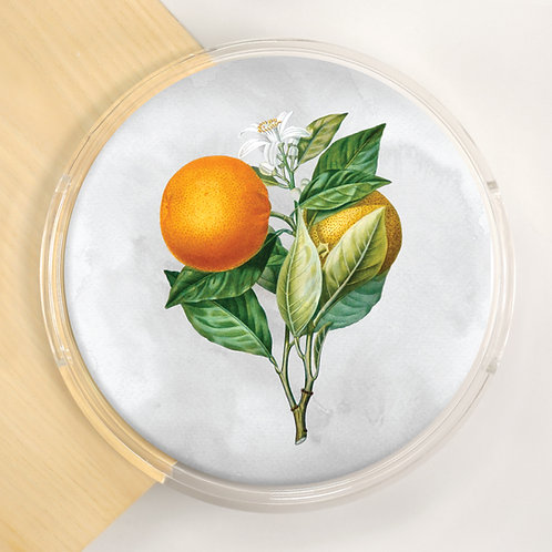 Round Lucite Tray - 5422S