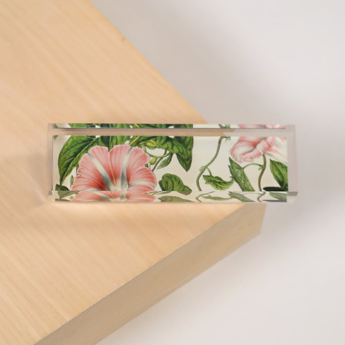 Plexiglass Prism - 4605S