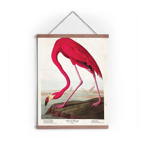Canvas Print - 5559S