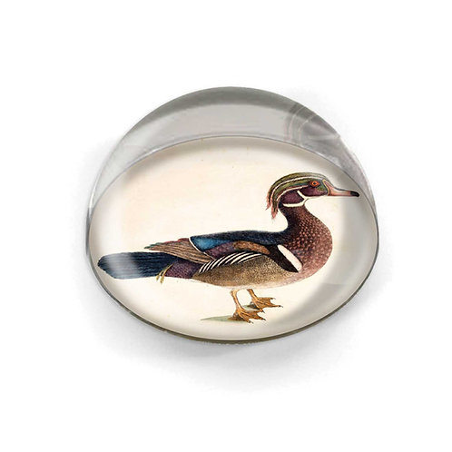 Glass Cabochon - 5558S