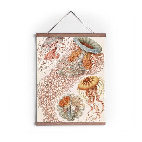 Canvas Print - 5604S