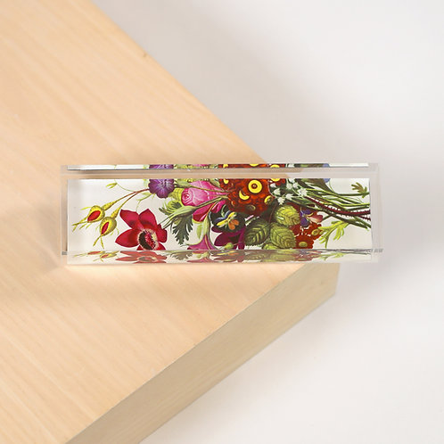 Plexiglass Prism - 5600S