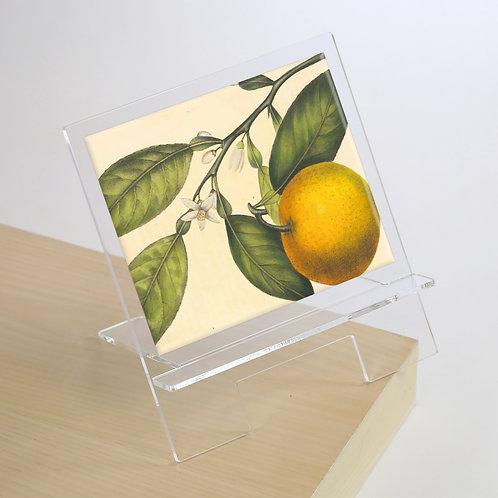 Book/Tablet Holder - 5618S