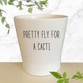 Pot pretty fly.jpg