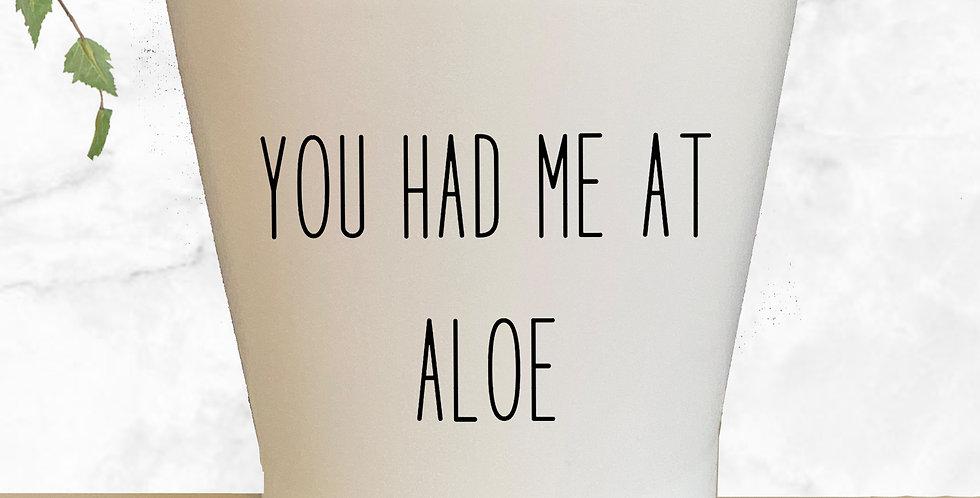You Has Me At Aloe Succulent Pot