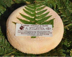 A Filetta brebis