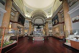 Государственный музей Арктики и Антарктики Санкт-Петербург