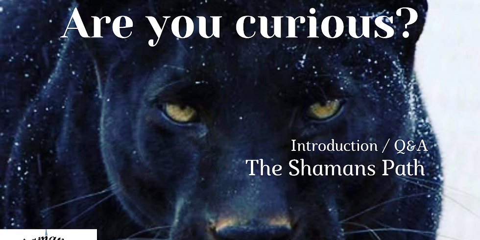 The Shamans Path Introduction