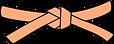 оранжевый пояс.png