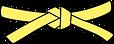 желтый пояс.png