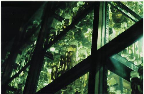 Naturkundemuseum 2019