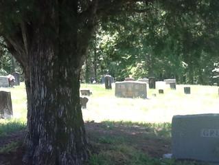 Cemetery Walking