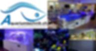 Logo_Original_Geändert.jpeg