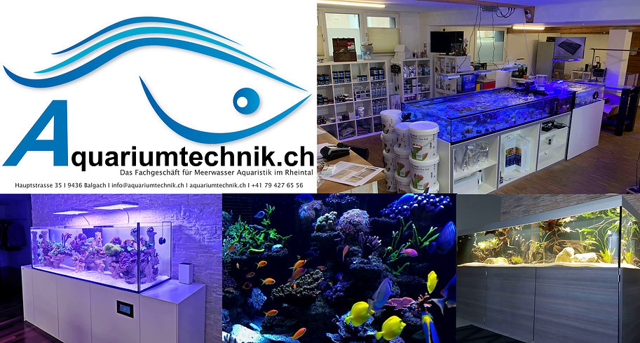 Aquariumtechnik
