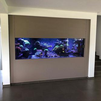 Grosses Aquarium