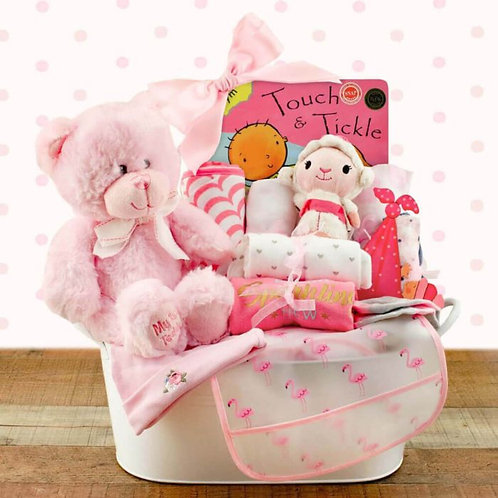 Welcome Home Baby Girl Gift Basket (L)