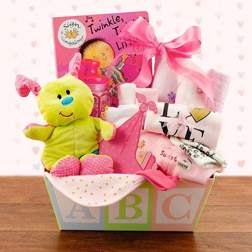 Bouncing Baby Girl Gift Basket