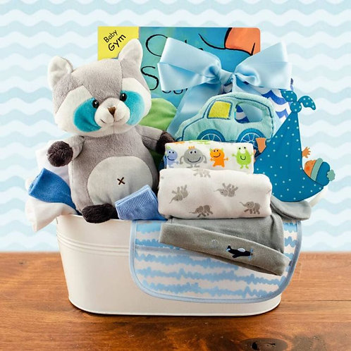 Welcome Home Baby Boy Gift Basket (L)