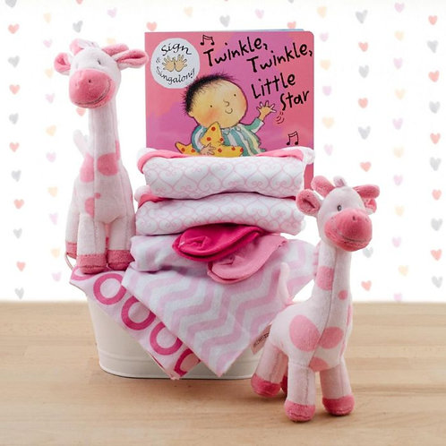 Terrific Twins Gift Basket - Twin Girls