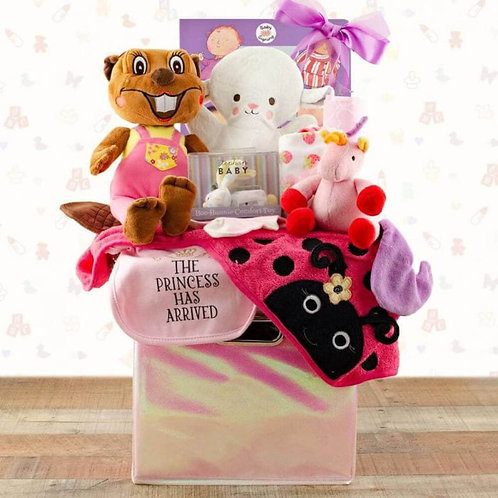 Your Precious Baby Girl Gift Basket