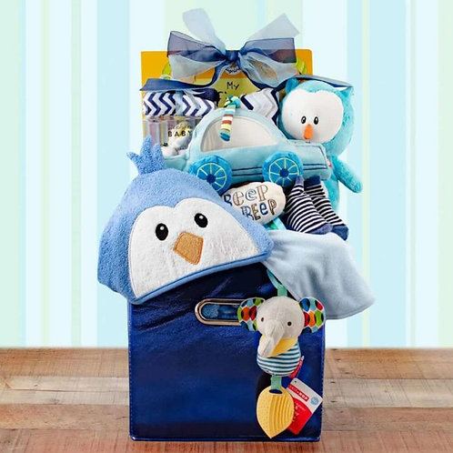 Your Precious Baby Boy Gift Basket