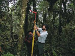 Uso de minicámara para monitorear nido.
