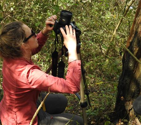 2- Preparación de cámara para foto hemis