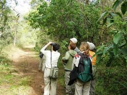 Observación de aves en Eco Portal de Piedra..