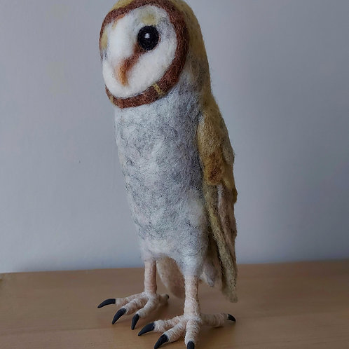 Barn Owl needle felting pack