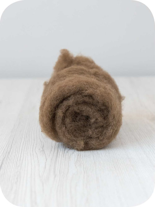 Carded New Zealand wool in Nut