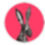 www.thewoollyrabbit.co.uk