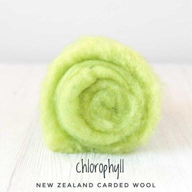 chlorophyll - Copy.jpg