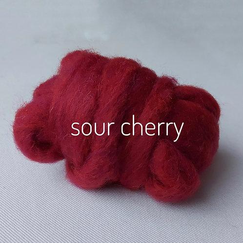 Tutti Frutti Melange carded Corridale sliver in Sour Cherry