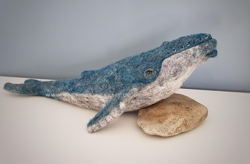 needle felted whale course