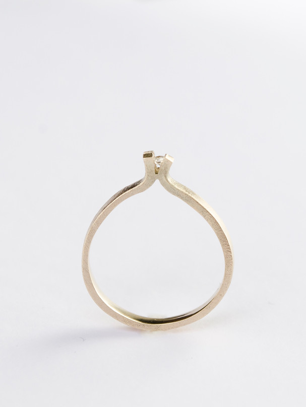 Transfigure ring