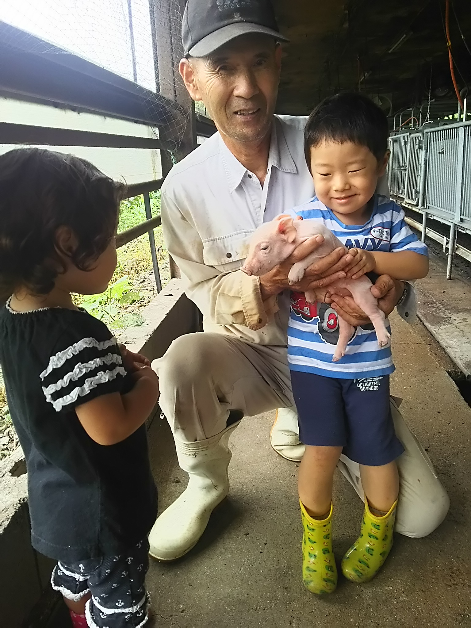 豚とジィジと孫