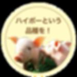 btn_kodawari03.png