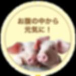 btn_kodawari01.png