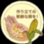 btn_kodawari02.png