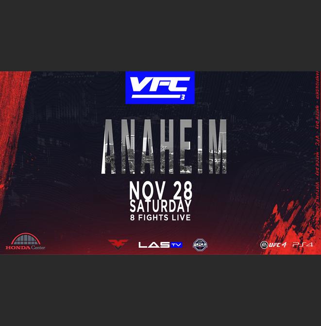VS.UFC VFC3 (site).png