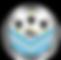 Tours_FC_logo.svg.png